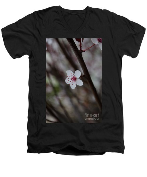 Flowering Plum 3 Men's V-Neck T-Shirt