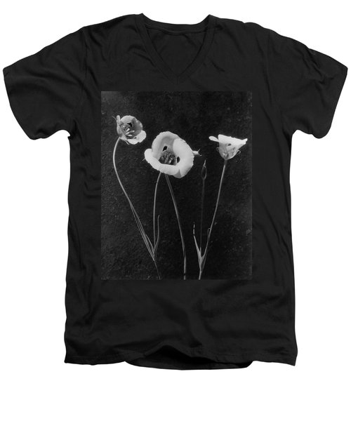 Flowers In Louise Beebe Wilder's Garden Men's V-Neck T-Shirt