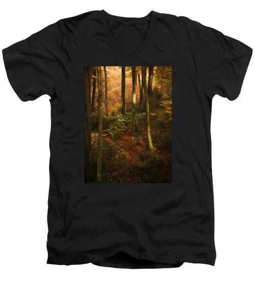 Forest Deep No. 2 Men's V-Neck T-Shirt by Richard Cummings