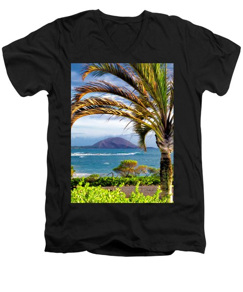 Four Seasons 110 Men's V-Neck T-Shirt