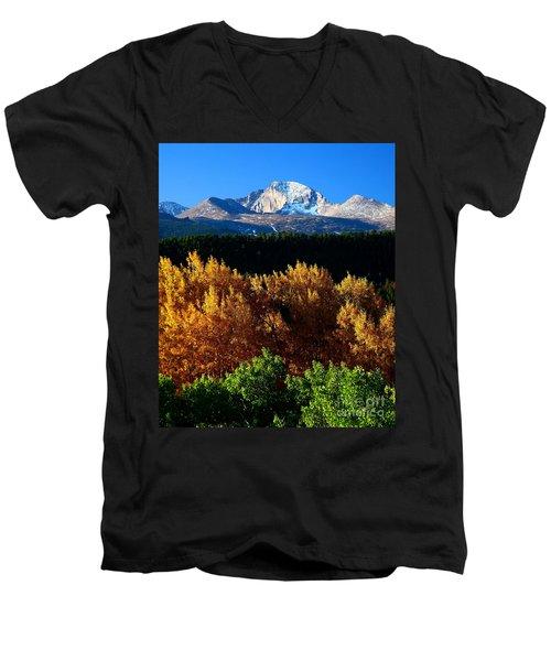 Four Seasons Men's V-Neck T-Shirt by Steven Reed