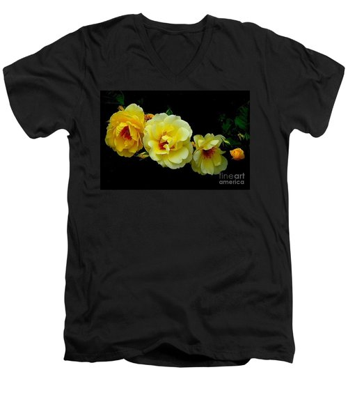 Men's V-Neck T-Shirt featuring the photograph Four Stages Of Bloom Of A Yellow Rose by Janette Boyd