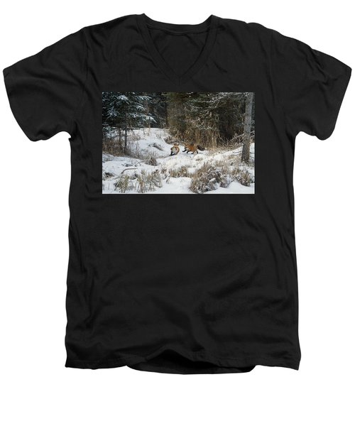 Fox Hollow Men's V-Neck T-Shirt