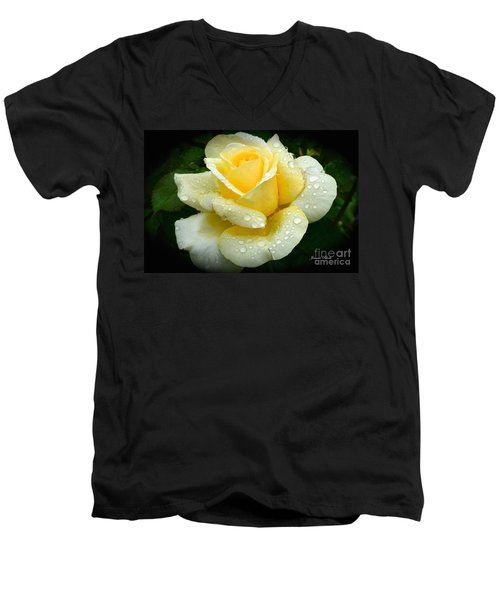 Fresh Sunshine Daydream Rose Men's V-Neck T-Shirt