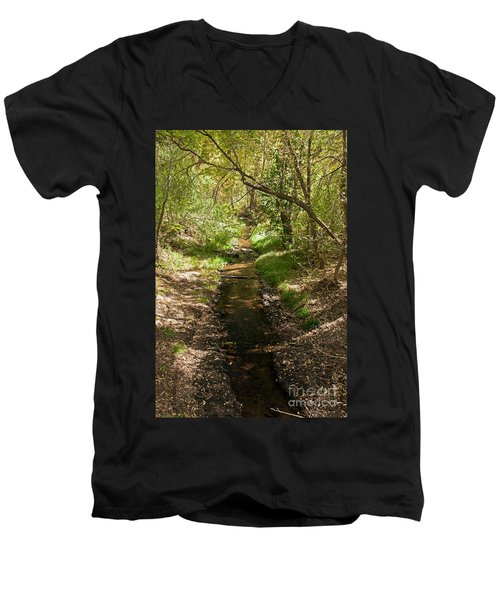 Frijole Creek Bandelier National Monument Men's V-Neck T-Shirt