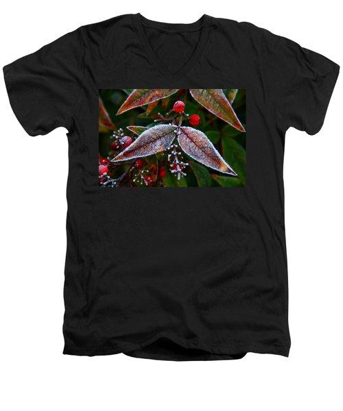 Frosted Nandina Leaves Men's V-Neck T-Shirt