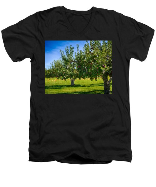 Fruits And Vegetables Men's V-Neck T-Shirt