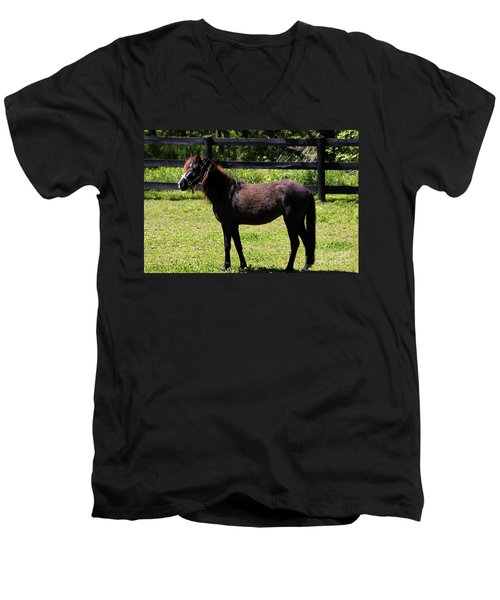 Furry Pony Men's V-Neck T-Shirt