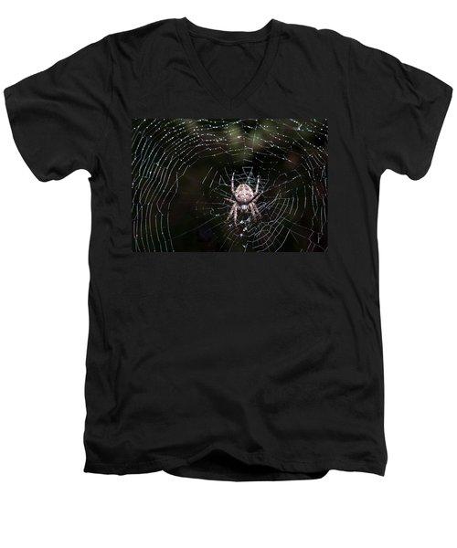 Men's V-Neck T-Shirt featuring the photograph Garden Spider by Matt Malloy