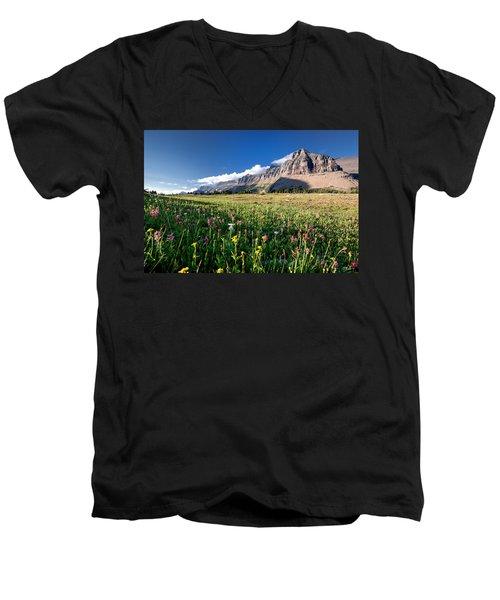 Garden Wall At Dusk Men's V-Neck T-Shirt by Aaron Aldrich