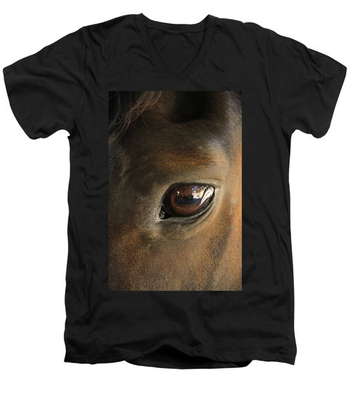 Gateway To A Horses Soul Men's V-Neck T-Shirt