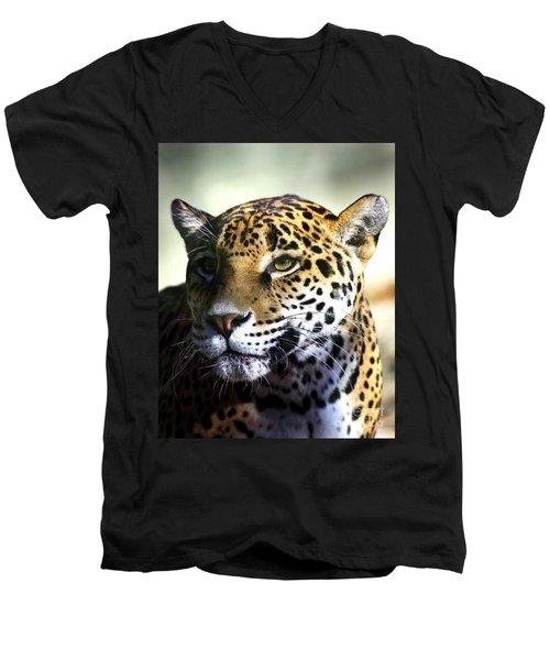 Gazing Jaguar Men's V-Neck T-Shirt by Liz Masoner