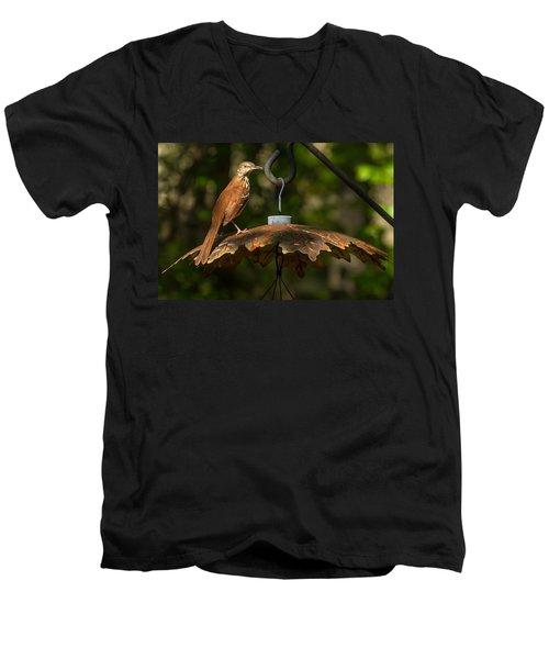 Men's V-Neck T-Shirt featuring the photograph Georgia State Bird - Brown Thrasher by Robert L Jackson