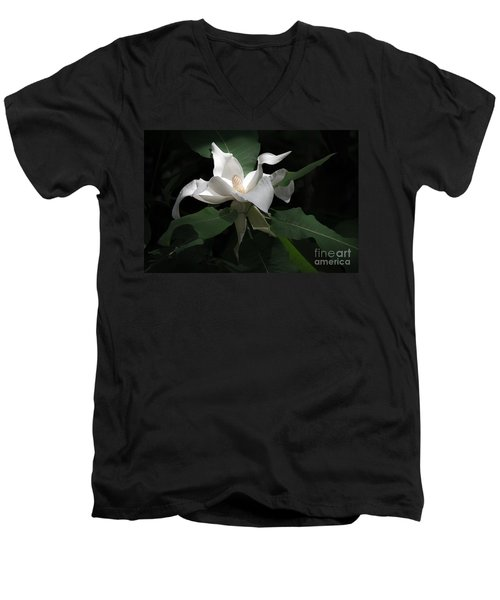 Giant Magnolia Men's V-Neck T-Shirt