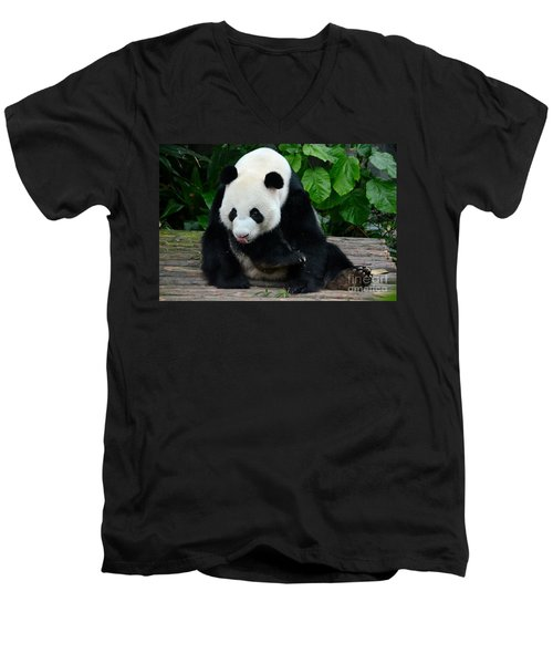 Giant Panda With Tongue Touching Nose At River Safari Zoo Singapore Men's V-Neck T-Shirt