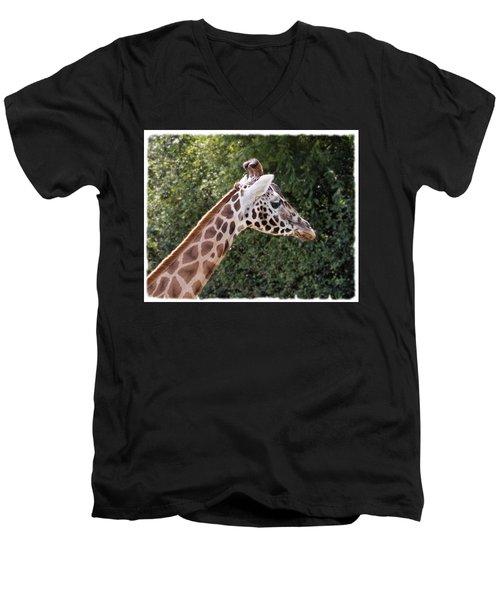 Giraffe 01 Men's V-Neck T-Shirt