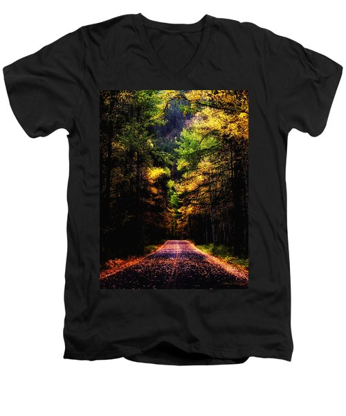 Glacier Fall Road Men's V-Neck T-Shirt