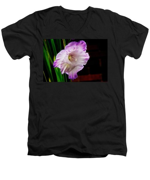 Gladiolus - Summer Beauty Men's V-Neck T-Shirt