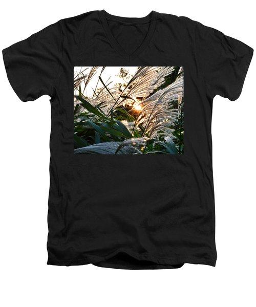 Glowing Pampas Men's V-Neck T-Shirt