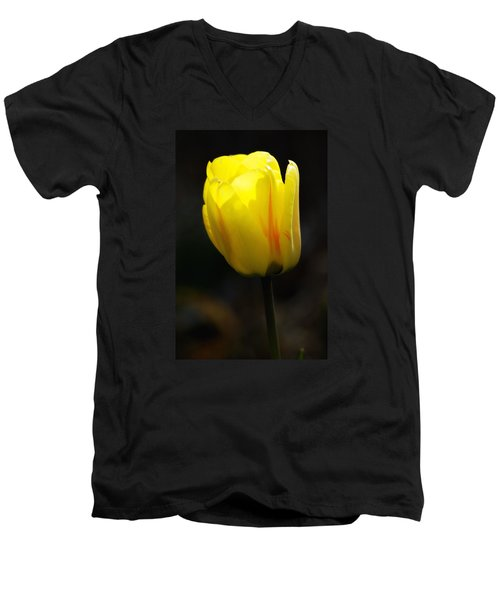 Glowing Tulip Men's V-Neck T-Shirt by Shelly Gunderson