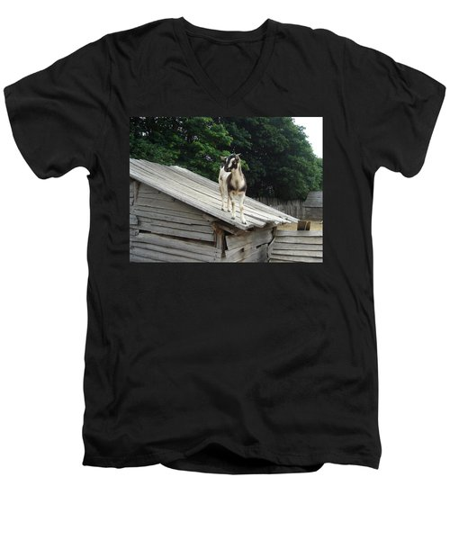 Goat On The Roof Men's V-Neck T-Shirt