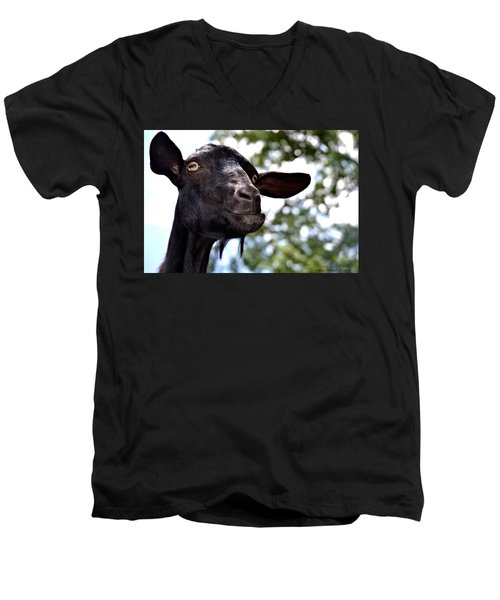 Goat Men's V-Neck T-Shirt by Tara Potts