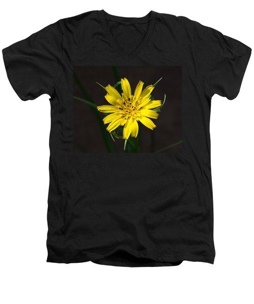 Goats Beard Flower Men's V-Neck T-Shirt