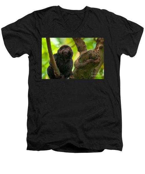 Men's V-Neck T-Shirt featuring the photograph Goeldi's Callimico by Bianca Nadeau