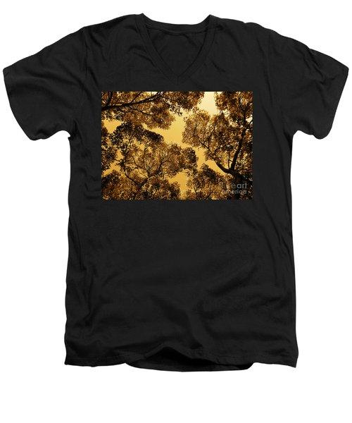 Golden Camphor Men's V-Neck T-Shirt