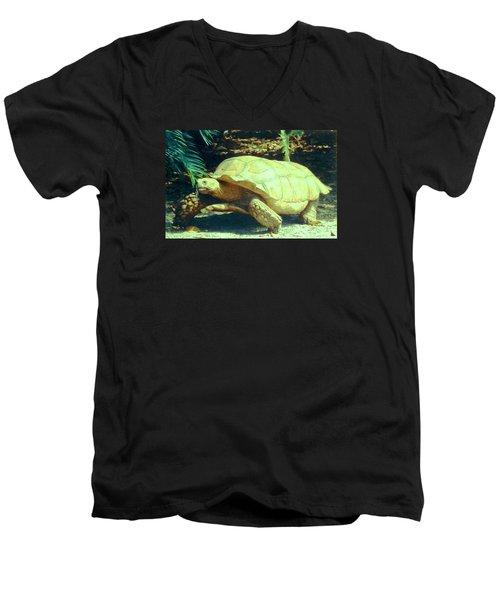 Golden Galapagos  Men's V-Neck T-Shirt