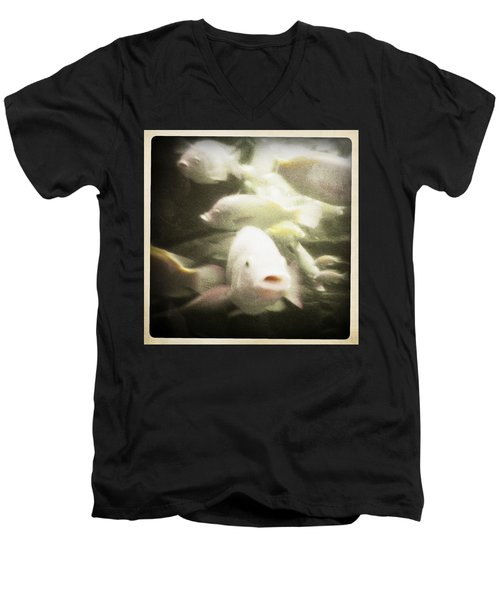 Men's V-Neck T-Shirt featuring the photograph Gouramis by Bradley R Youngberg