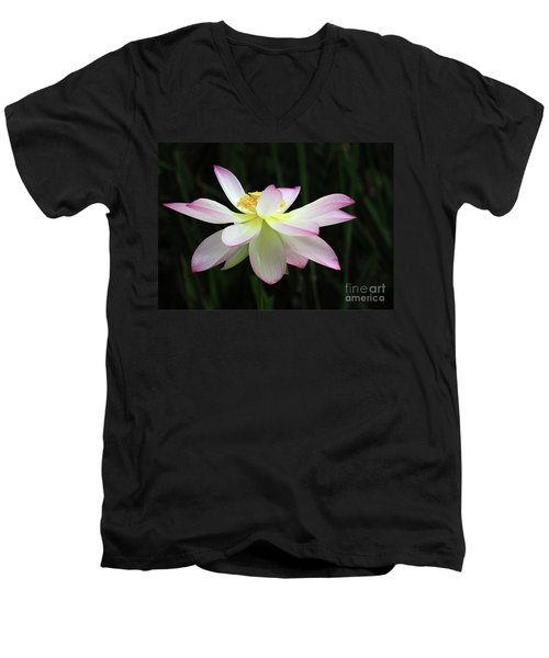 Graceful Lotus Men's V-Neck T-Shirt