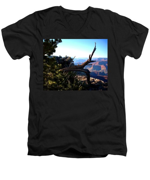 Grand Canyon Dead Tree Men's V-Neck T-Shirt by Matt Harang