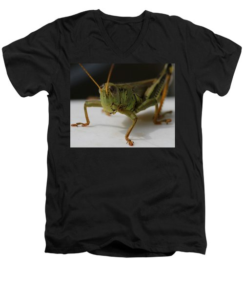 Grasshopper Men's V-Neck T-Shirt by Dan Sproul