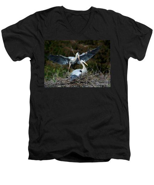 Great Blue Herons Nesting Men's V-Neck T-Shirt