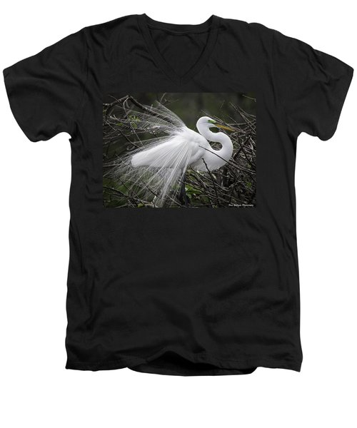 Great Egret Preening Men's V-Neck T-Shirt
