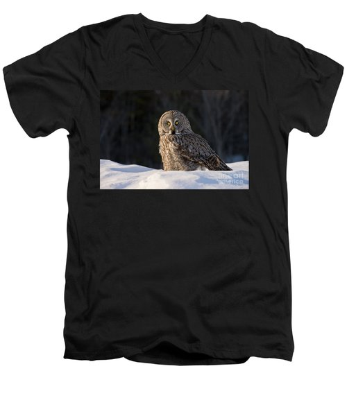 Great Gray Owl In Snow Men's V-Neck T-Shirt
