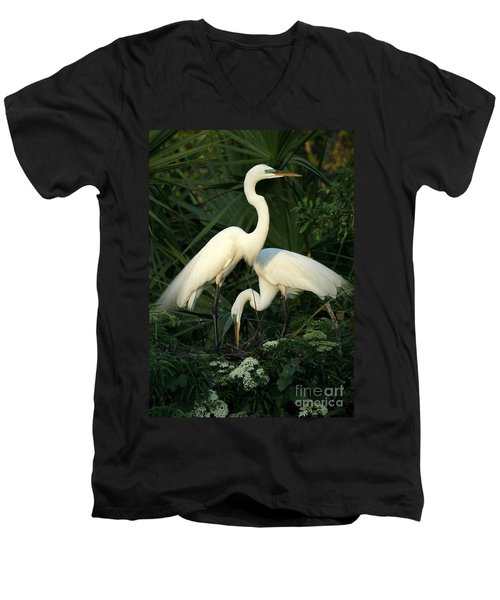 Great White Egret Mates Men's V-Neck T-Shirt