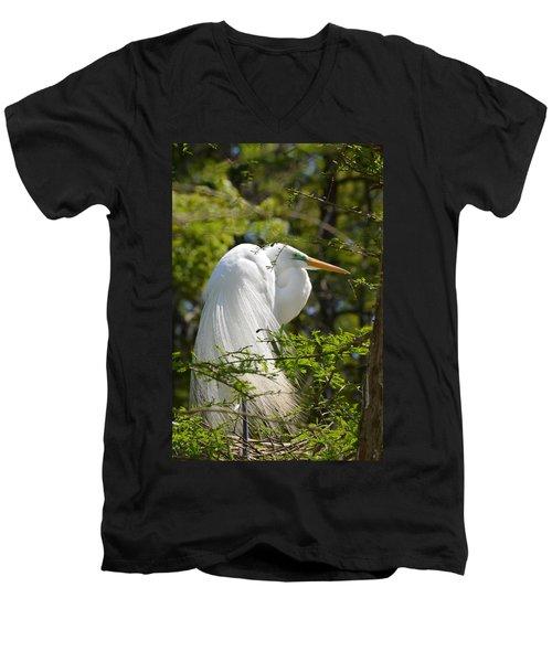 Great White Egret On Nest Men's V-Neck T-Shirt by Judith Morris