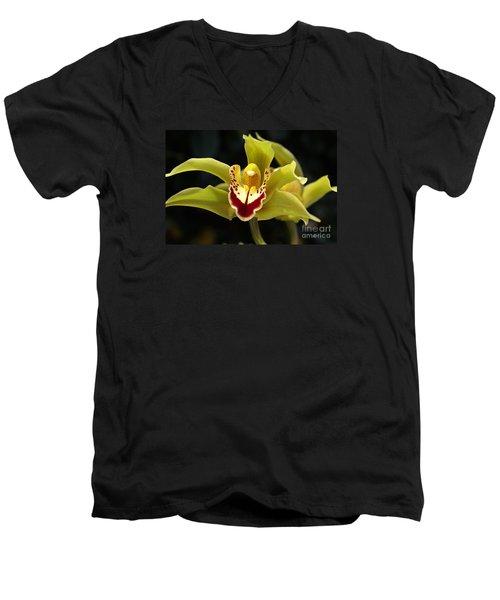 Green Orchid Flower Men's V-Neck T-Shirt