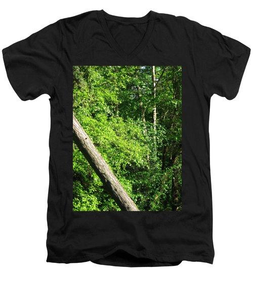 Greenbelt Fall Men's V-Neck T-Shirt by David Trotter