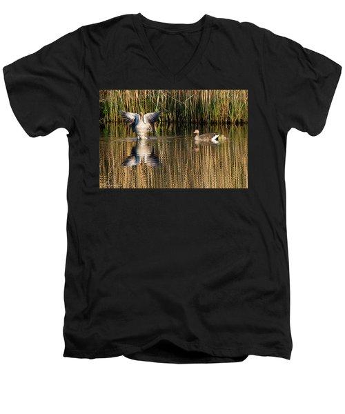 Greylag Goose Family Men's V-Neck T-Shirt