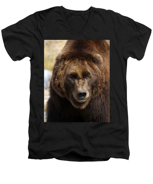 Men's V-Neck T-Shirt featuring the photograph Grizzly by Steve McKinzie