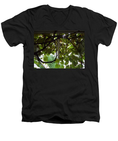 Men's V-Neck T-Shirt featuring the photograph Gropius Vine by Joseph Skompski