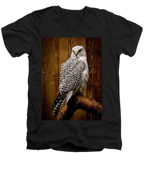 Gyrfalcon Perched Men's V-Neck T-Shirt