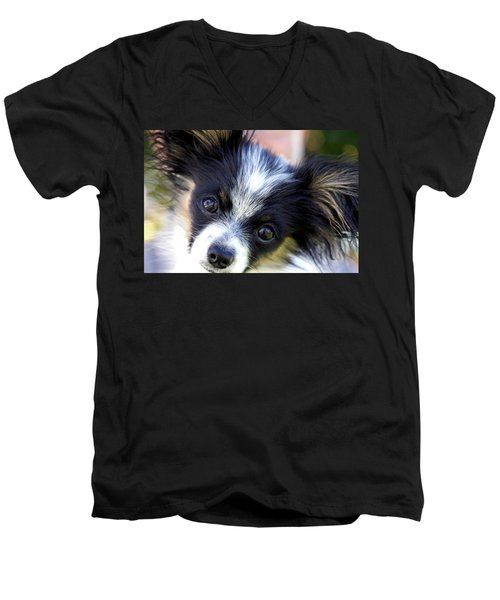 Hanna The Papillon Puppy Men's V-Neck T-Shirt by Karon Melillo DeVega