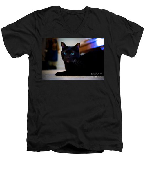 Havana Brown Cat Men's V-Neck T-Shirt
