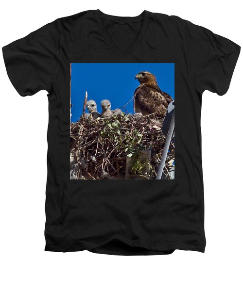 Men's V-Neck T-Shirt featuring the photograph Hawk Babies by Brian Williamson