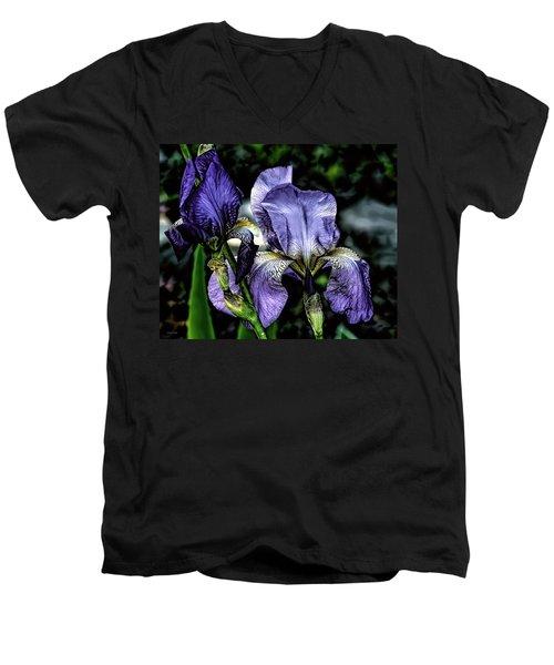 Heirloom Purple Iris Blooms Men's V-Neck T-Shirt