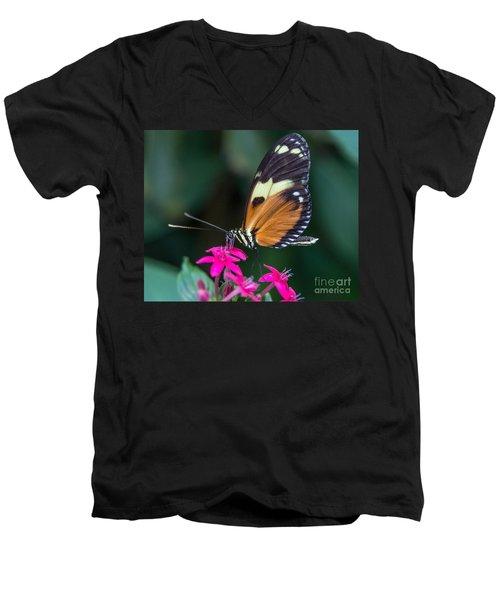Heliconius Ismenius Men's V-Neck T-Shirt